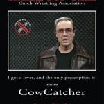 Cowcatcher